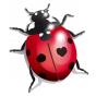 Stickers coccinelle rouge