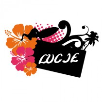 Stickers porte nom surf orange et rose