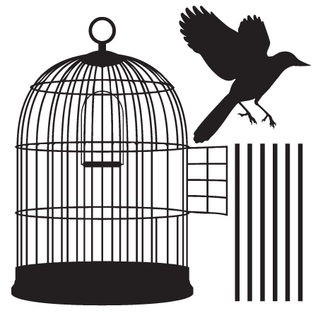 stickers cage oiseau stickers malin. Black Bedroom Furniture Sets. Home Design Ideas