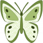 Stickers Papillon aux tons verts
