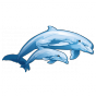Stickers Les dauphins