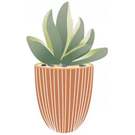 Stickers carré plante succulente