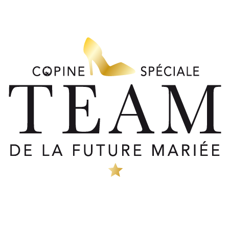 t shirt evjf champagne team stickers malin. Black Bedroom Furniture Sets. Home Design Ideas