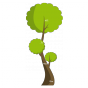 Stickers toise arbre