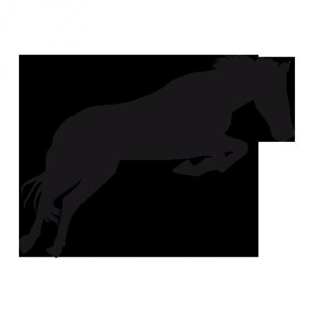 Stickers cheval qui saute stickers malin - Cheval qui saute dessin ...