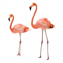 Stickers flamants roses 1