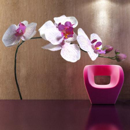 Stickers Orchidée blanc et rose