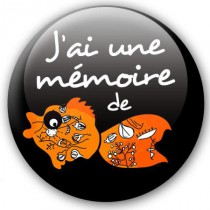 Badge Fun Mémoire de Poisson rouge