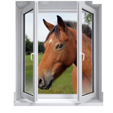 stickers trompe l 39 oeil fen tre cheval stickers malin. Black Bedroom Furniture Sets. Home Design Ideas